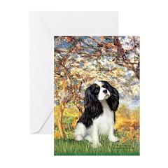 Spring & Tri Cavalier Greeting Cards (Pk of 10)
