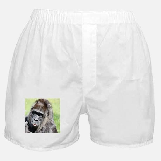 Cute Macaque Boxer Shorts
