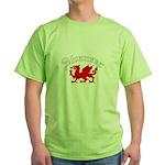 Swansea, Wales Green T-Shirt