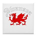 Swansea, Wales Tile Coaster