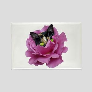 Rose Cat Rectangle Magnet