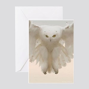Ghost Owl Greeting Cards