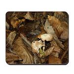 Woodland Floor Mousepad
