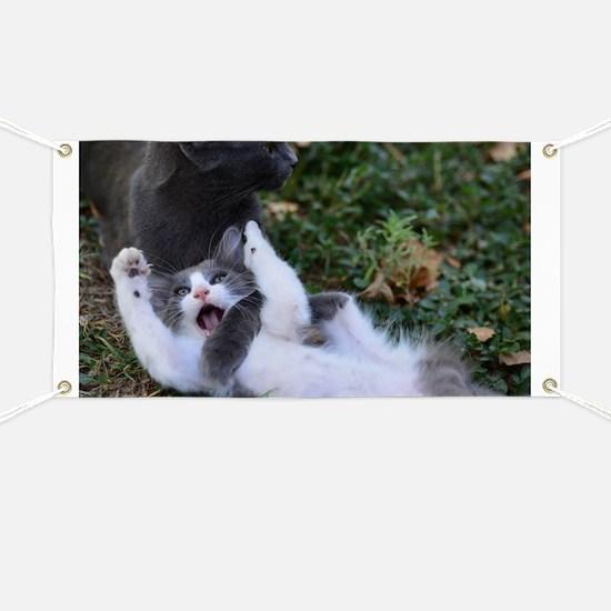 Playful Cats Banner