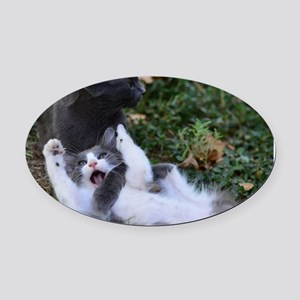 Playful Cats Oval Car Magnet