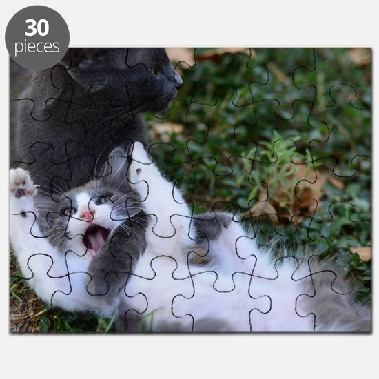 Playful Cats Puzzle