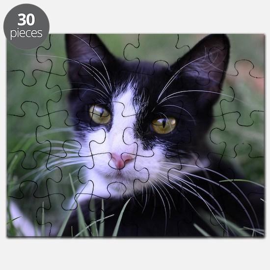 Cute Black white tuxedo kitty Puzzle