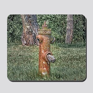 Decaying Fire Hydrant Mousepad