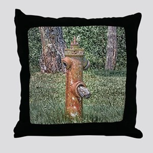 Decaying Fire Hydrant Throw Pillow