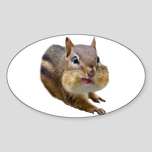 Funny Chipmunk Sticker