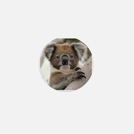 Funny Koala Mini Button