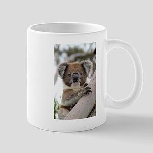 Precious Baby Koala in Eucalyptus Gum Tree Mugs
