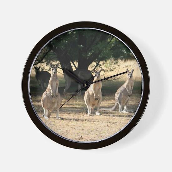 Unique Funny animal photos Wall Clock