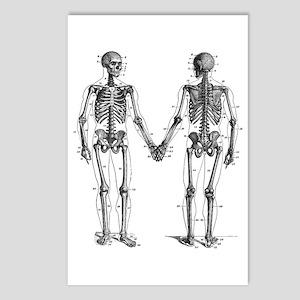Skeletons Postcards (Package of 8)