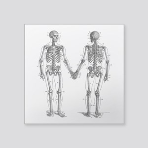 "Skeletons Square Sticker 3"" x 3"""