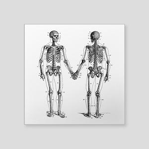 "Skeletons Square Sticker 3"" x 3"""