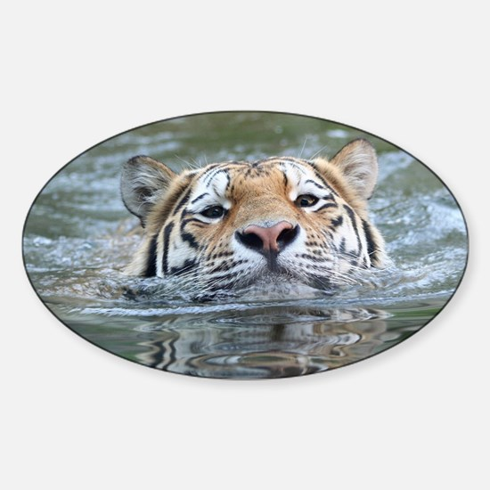 Tiger005 Decal