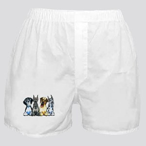 4 Great Danes Boxer Shorts