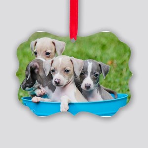 Italian Greyhound Puppies Picture Ornament