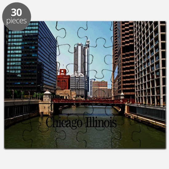 Chicago Illinois Puzzle