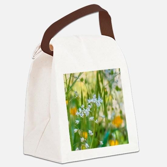 Unique Nature Canvas Lunch Bag