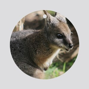 A Darned Cute Wallaby in Australia Round Ornament