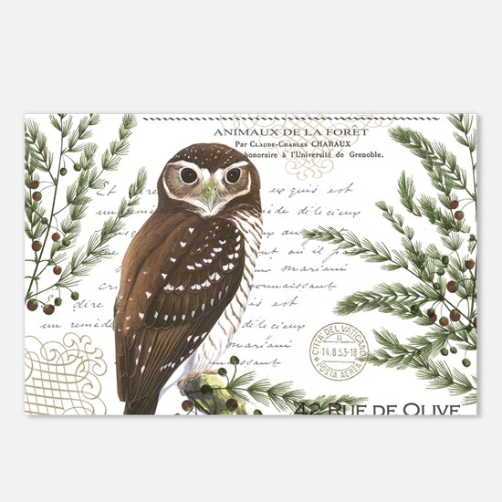 modern vintage French winter woodland owl Postcard