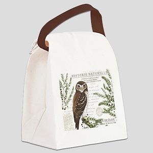 modern vintage French winter woodland owl Canvas L
