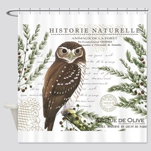 modern vintage French winter woodland owl Shower C