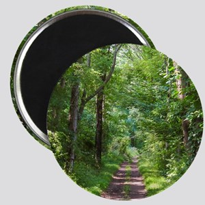 Forest Trail Magnets