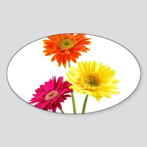 Daisy Gerbera Flower Sticker