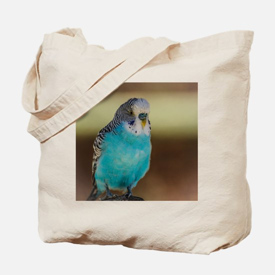 Cute Colorful cartoon parakeets Tote Bag