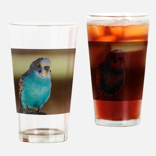 Funny Cartoons lovebirds Drinking Glass