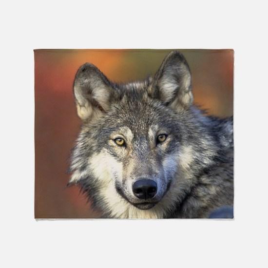 Cute Grey wolf Throw Blanket