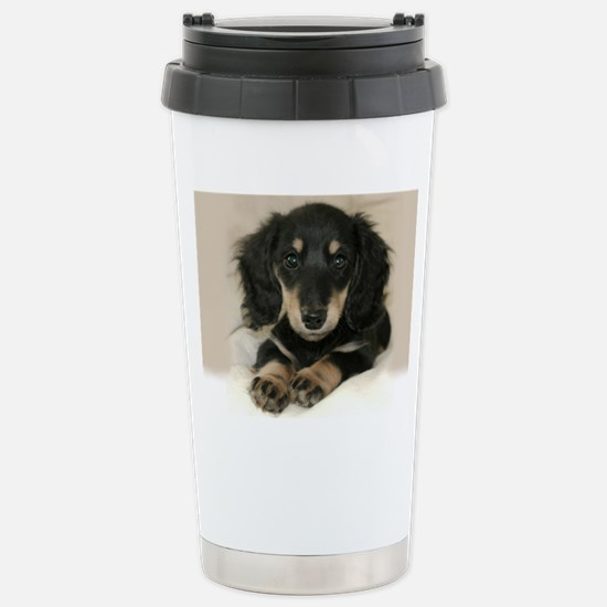 long hair black doxie 1 Stainless Steel Travel Mug