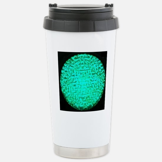 ART Green Light Stainless Steel Travel Mug