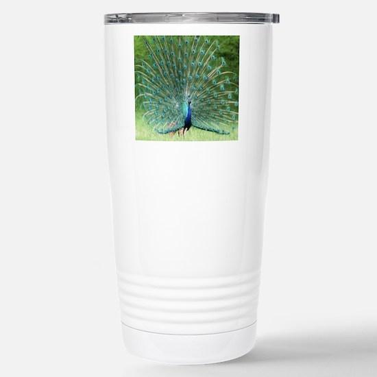 peacock-MP Stainless Steel Travel Mug