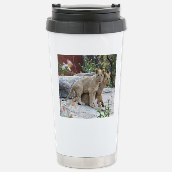 lion cubs-MP Stainless Steel Travel Mug