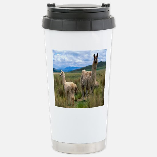 blanket15 Stainless Steel Travel Mug