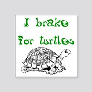 I Brake Turtles - Sticker