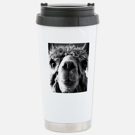 11x11 say cheese Stainless Steel Travel Mug