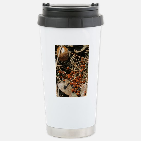 IMG_0723 18x24 Stainless Steel Travel Mug