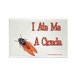 I Ate Me A Cicada Rectangle Magnet (100 pack)