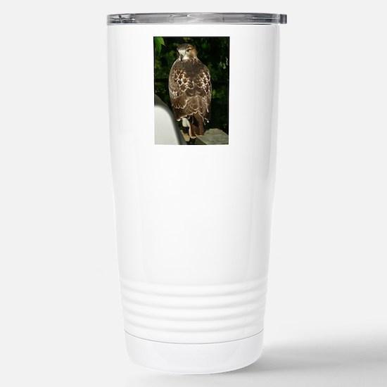 Hawk10x8a Stainless Steel Travel Mug