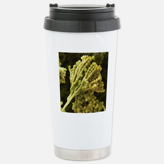 Mould fungus, SEM Stainless Steel Travel Mug