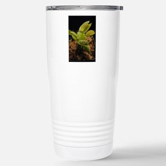 venus flytrap Stainless Steel Travel Mug