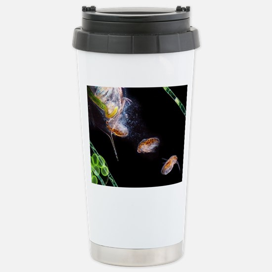Water flea giving birth Stainless Steel Travel Mug