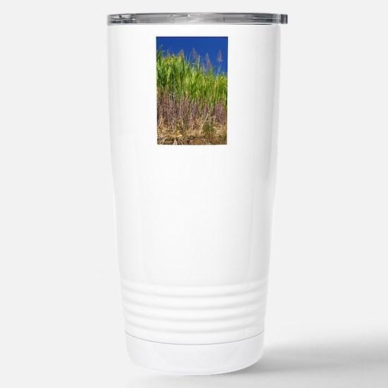 Sugar cane Stainless Steel Travel Mug