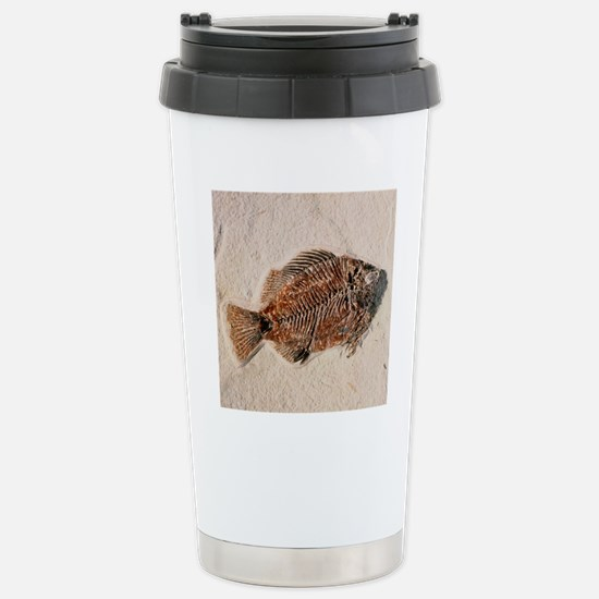 Fossilised fish, Prisca Stainless Steel Travel Mug