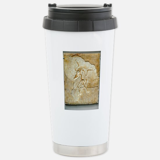 Archaeopteryx fossil, B Stainless Steel Travel Mug